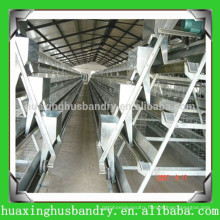 good quality cheap price galvanizing hen house project
