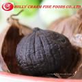 GMP Kosher Halal manufacturer Free samples High quality Black Garlic Extract