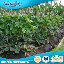 Alibaba Hot Products Non-Woven Agriculture Plástico Negro Mulch Film