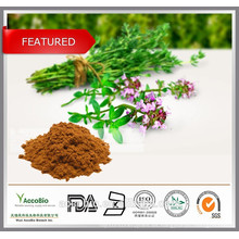 Tomillo de hierbas chino PE, polvo de timol 20%, CAS 89-83-8