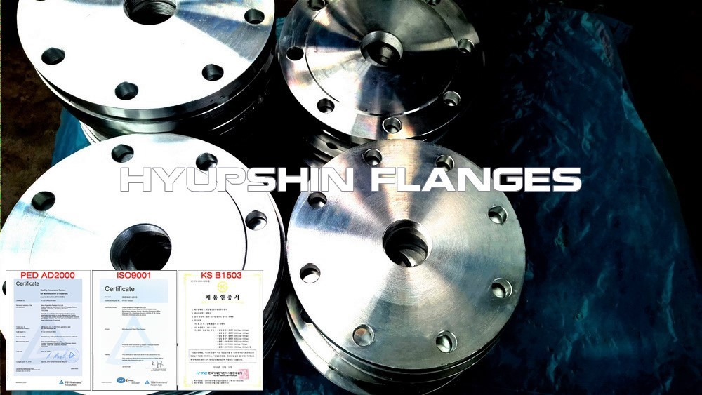 Hyupshin Flanges Screwed Threaded Plate