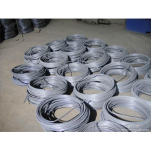 Hot Rolled High Quality Titanium Alloy Wire