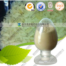 Halal Factory Supply Protein Powder Rice Protein Powder