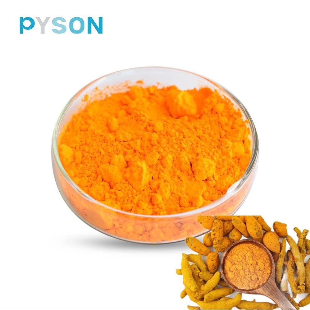 turmeric extract supplement