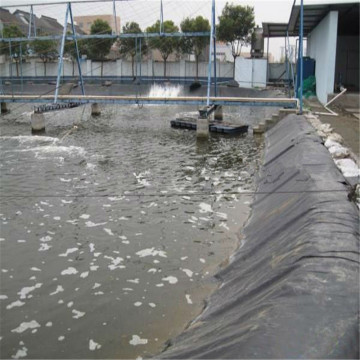2mm HDPE Geomembrane Price Fish Farm Pond Liner