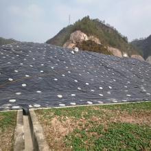 Пластиковая водонепроницаемая потолочная плита из ПВХ для сада на крыше
