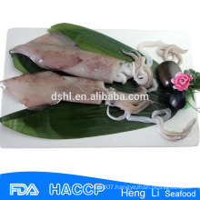 HL0088 frozen illex argentina squid low-fat