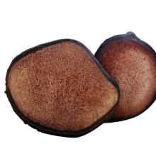 Cervi Cornu Pantotrichum de qualité supérieure