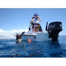 Sail 2 Stroke 40HP Outboard Motor (Manufacturer since 2003)