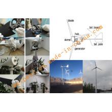 Sistema de generador de energía eólica de 2kw para uso en casa o granja Sistema de fuera de red GEL BATERÍA 12V100AH