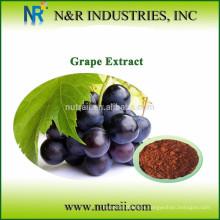 Aceite de semilla de uva prensado en frío