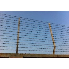 Steel single strand galvanized barbed wire price