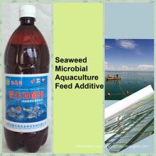 Agente biopreparado de biobacterias de algas para aditivos alimentarios