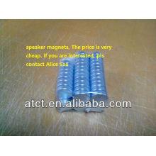 Lautsprecher Magnet/Portable magnetische Lautsprecher/Permanent-magnet