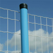 Plastic Coated Netherland Waved Mesh