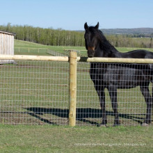 Hot sale with best price galvanized Field Fence cheap deer fence Grassland fence