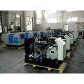 Gerador diesel à prova de som de 25kVA 60Hz posto por Yangdong (DG25)