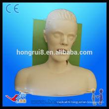HOT SALES adult airway endotrachea intubation model