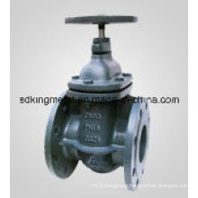 Concealed Pole Parallel Double Gate Valve