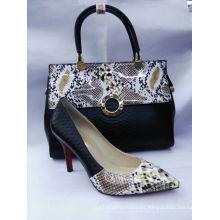 Patrón de serpiente de moda zapatos de tacón alto y bolsos (G-18)