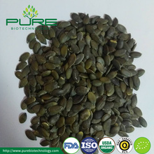 GWS pumpkin seeds kernel Grade A/AA/AAA
