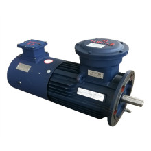 AC Listrik Acsychronous Vibrating Explosion-Proof Motors