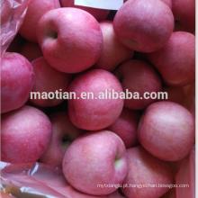 Nova temporada fresco vermelho fuji apple