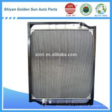 Vente chaude HOWO WG9729530231 pour le marché iranien