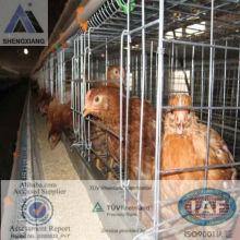 (Germany TUV Rheinland)chicken cage poultry farm design3 or 4 layer for 90 96 120chicken birds