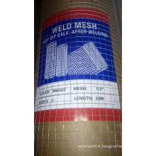 5/8inch Galvanized Welded Wire Mesh Price / Welded Wire Mesh Factory