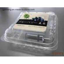 Boîte en plastique claire d'emballage d'ANIMAL FAMILIER pour le fruit / légume (plateau en plastique)