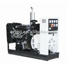 Fábrica de generador de China de la marca de fábrica de Yangdong con la oferta del OEM
