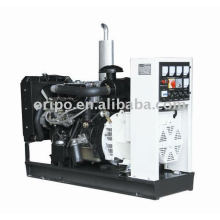 Yangdong brand china generator factory with OEM offer