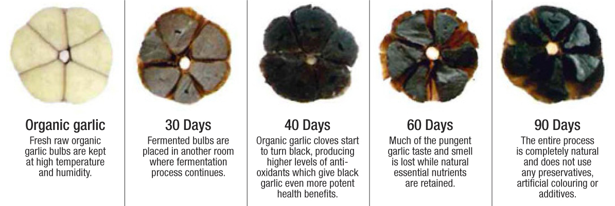 Whole black garlic 001