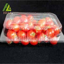 Clamshell Plastic Fresh Fruit Container