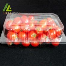 Récipient de fruits frais en plastique à clapet