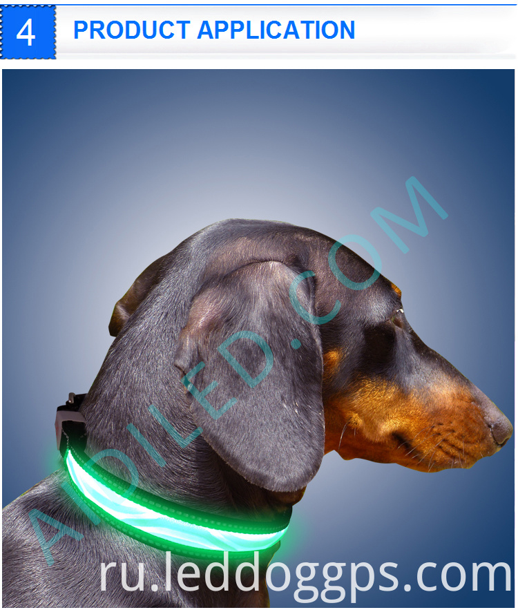 Dog Glow In The Dark Collar