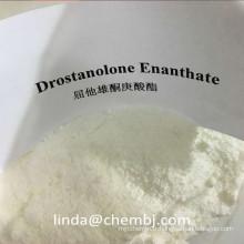 Enanthate de Drostanolone anabolisant de Donnat de Masteron pour le Bodybuilding