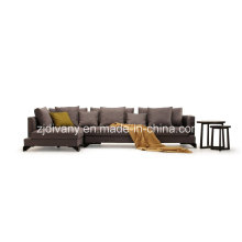 Fabric Sofa Furniture (D-75)