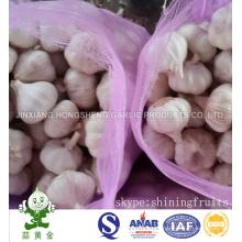 Size: 5.0cm Normal White Garlic 10kgs Loose Mesh Bag