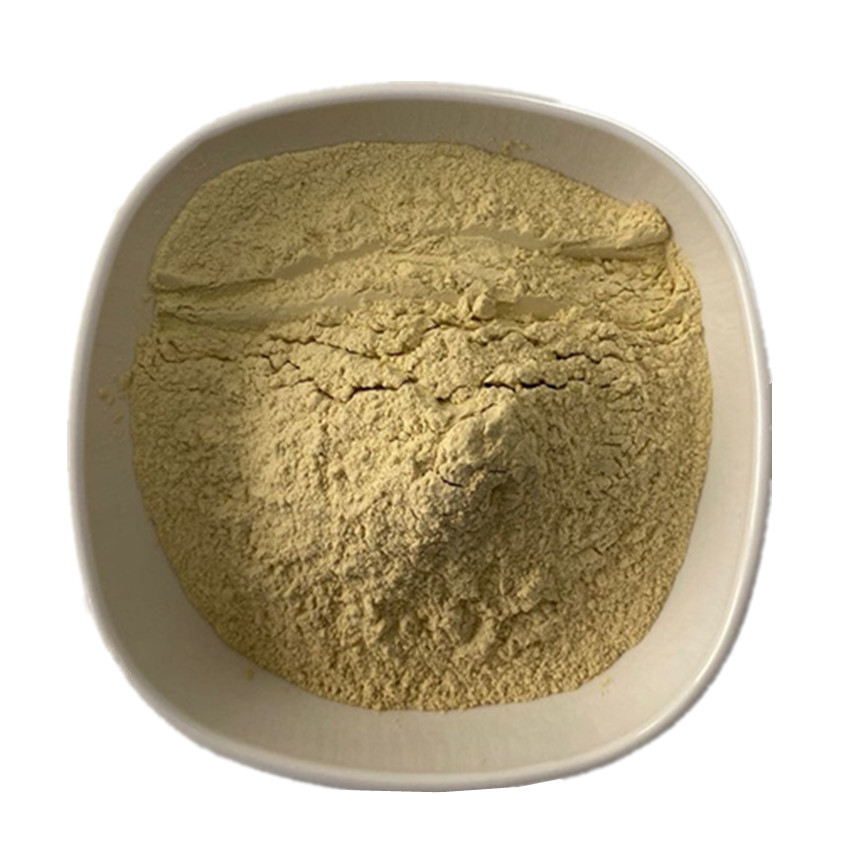 22sandal Wood Powder