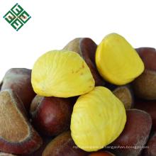 fornecimento de embalagem a granel chinês castanha fresca