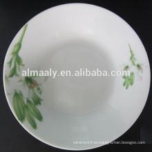 placa de cerámica blanca, plato de sopa, plato de pizza, placa