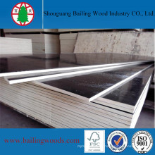 High Quality Plywood Species Shuttering Construction Film Faced Plywood