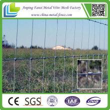 Galvanized Steel Hog Wire Fence Manufacturer