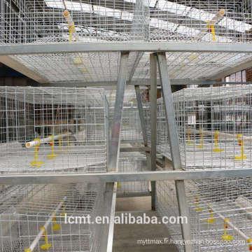 Cage de poulet couche d'oeuf spécial équipement d'élevage intelligent