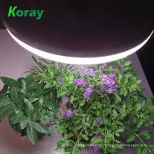 Produtos de agricultura 5w 15w cidly barato levou iluminação crescente hidroponia 18 W levou crescer luz para o cultivo de flores