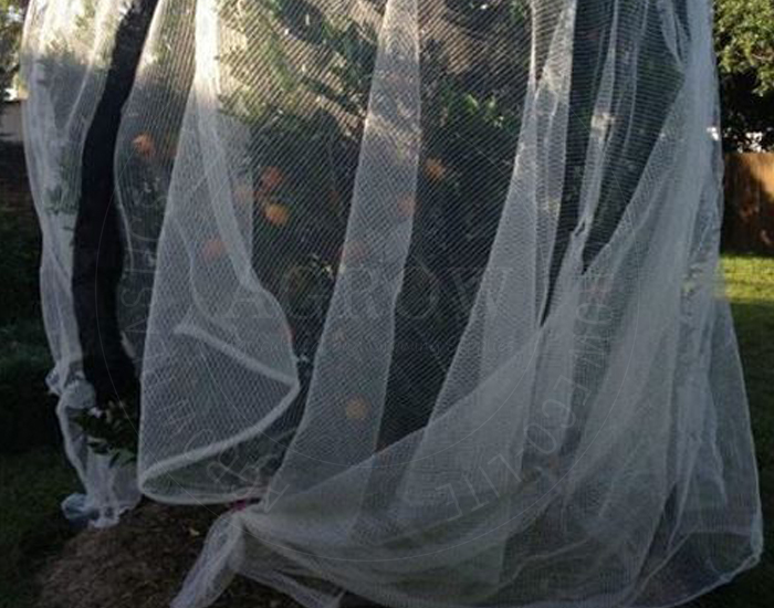 Garden Anti bird net
