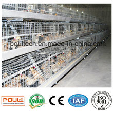 Small Chick Cage and Incubator for Poultry Farms