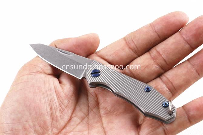 D2 Pocket Knife